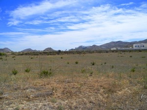 Land for sale in Turre, Almeria