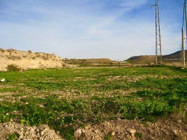 Premier terrain à Antas