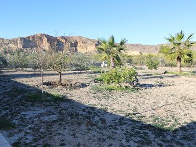 Land à vendre en Cuevas del Almanzora, Almeria