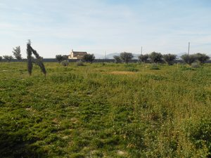 Land for sale in Lorca, Murcia