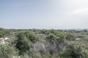 Land for sale in Partaloa, Almeria