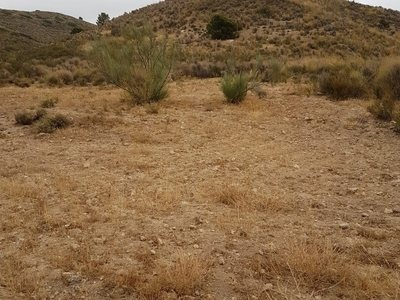 Land for sale in Lubrin, Almeria