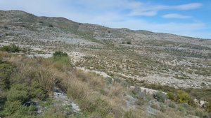 Land for sale in Lorca, Almeria
