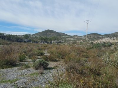 Grundstück zum verkauf in Lorca, Almeria